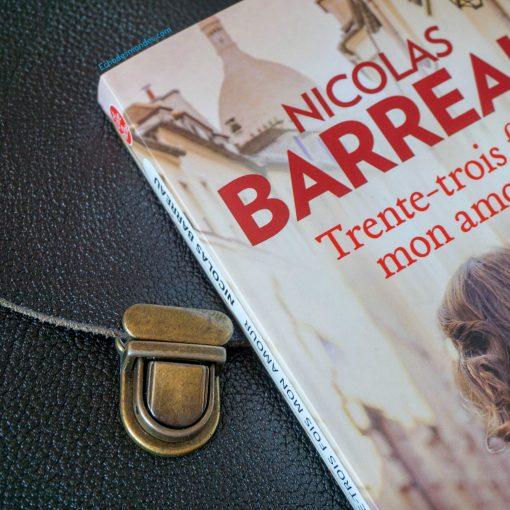 Photographie du livre 33 fois mon amour de N. Barreau
