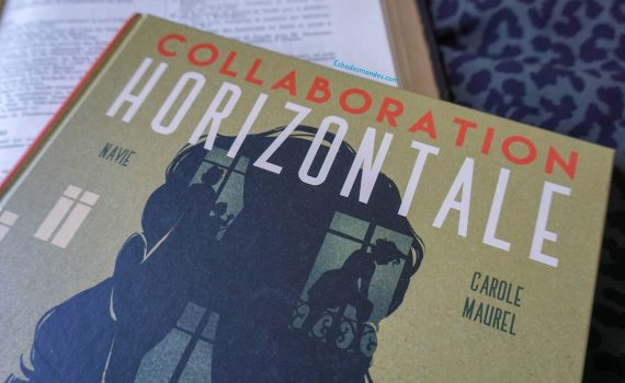 Photographie de la BD Collaboration Horizontale