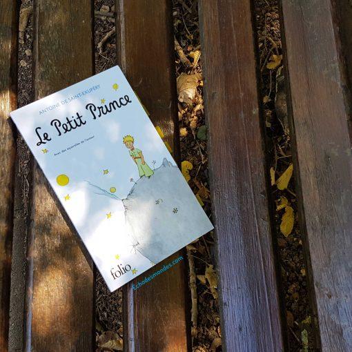 Photographie du roman - Le petit prince d'antoine de saint exupéry